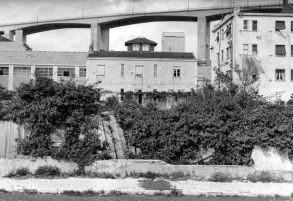 Em 1973  (Foto: Vasco Gouveia de Figueiredo, Arquivo Municipal de Lisboa)